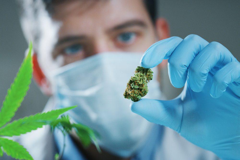 cannabis suit your lifestyle