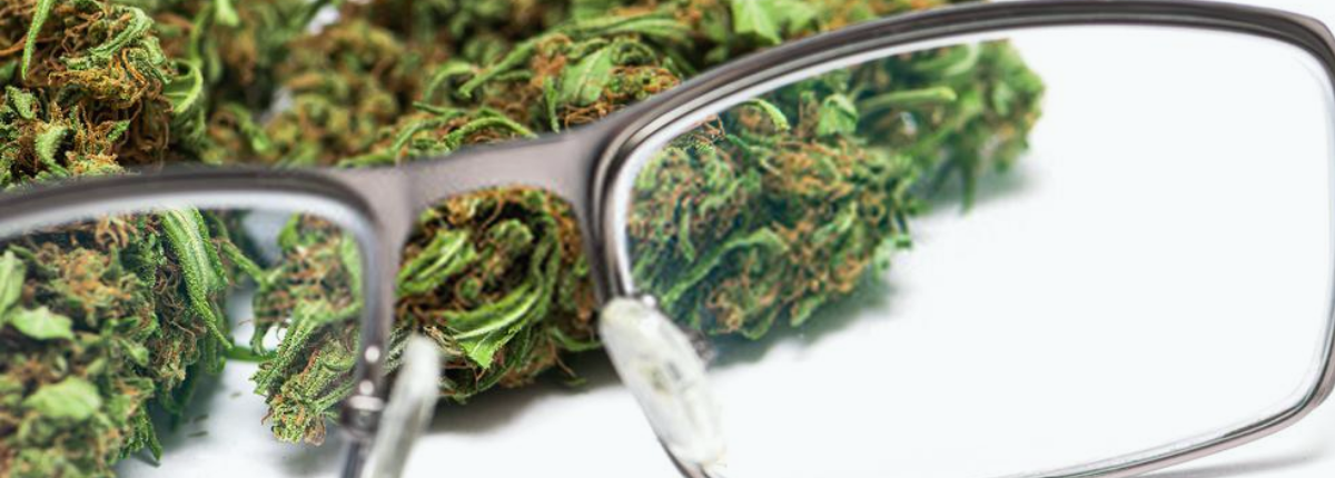 Cannabis and Cataracts Can The Herb Help_